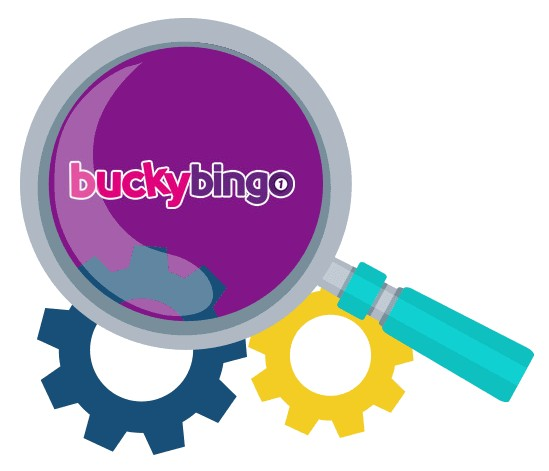 Bucky Bingo Casino - Software