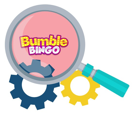 Bumble Bingo Casino - Software