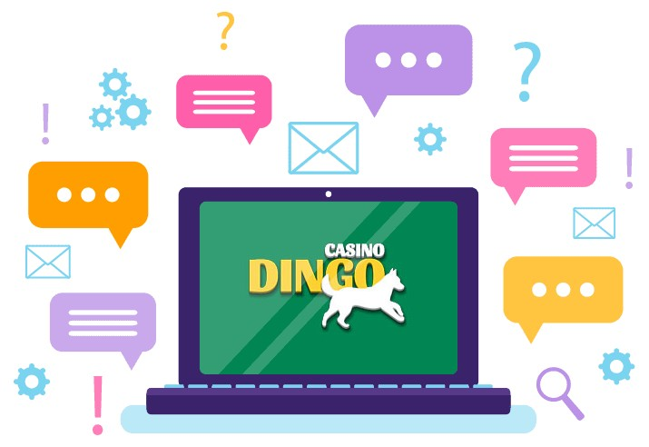 Dingo Casino - Support