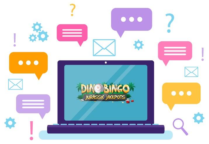 Dino Bingo - Support