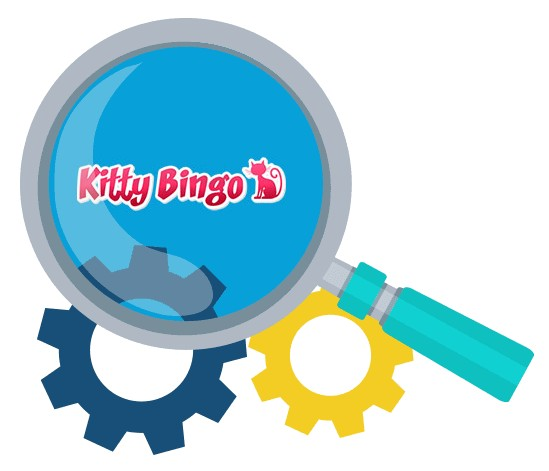 Kitty Bingo Casino - Software