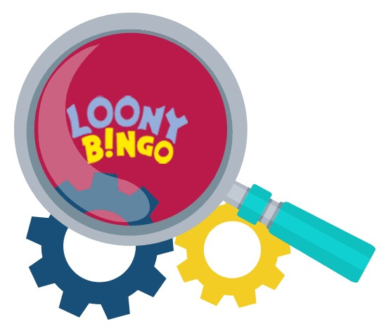 Loony Bingo - Software