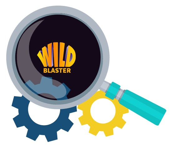 Wildblaster Casino - Software